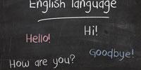 英语网校排名